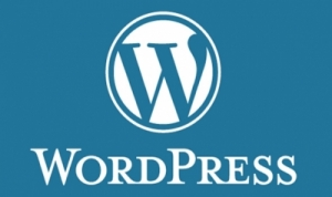Onderhoud WordPress